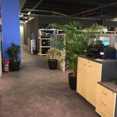 HP Ofis ( Eyüp ) - LVT